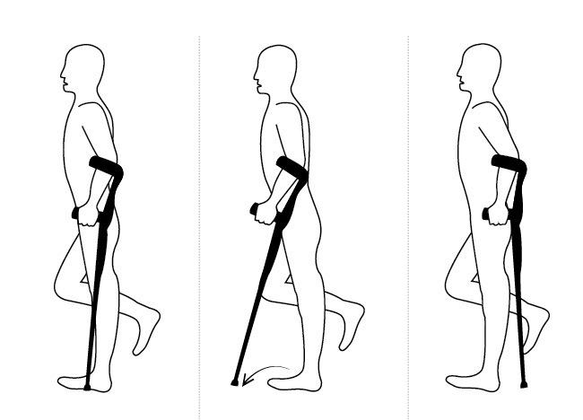 Правила ходьбы на канадках